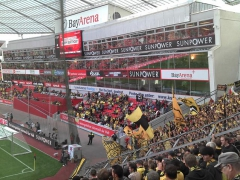 Leverkusen 2011-2012 (2).jpg
